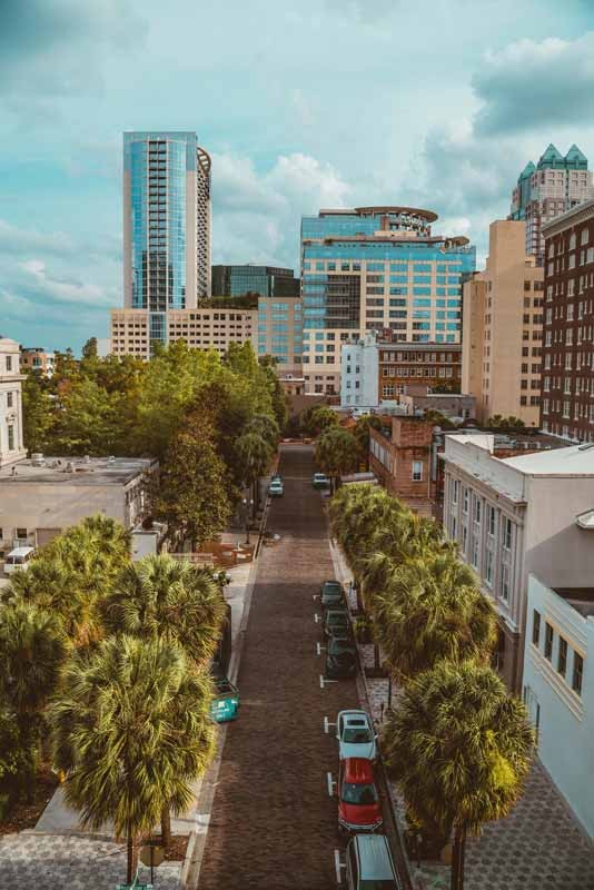 downtown Orlando, Florida, palm tree lined street