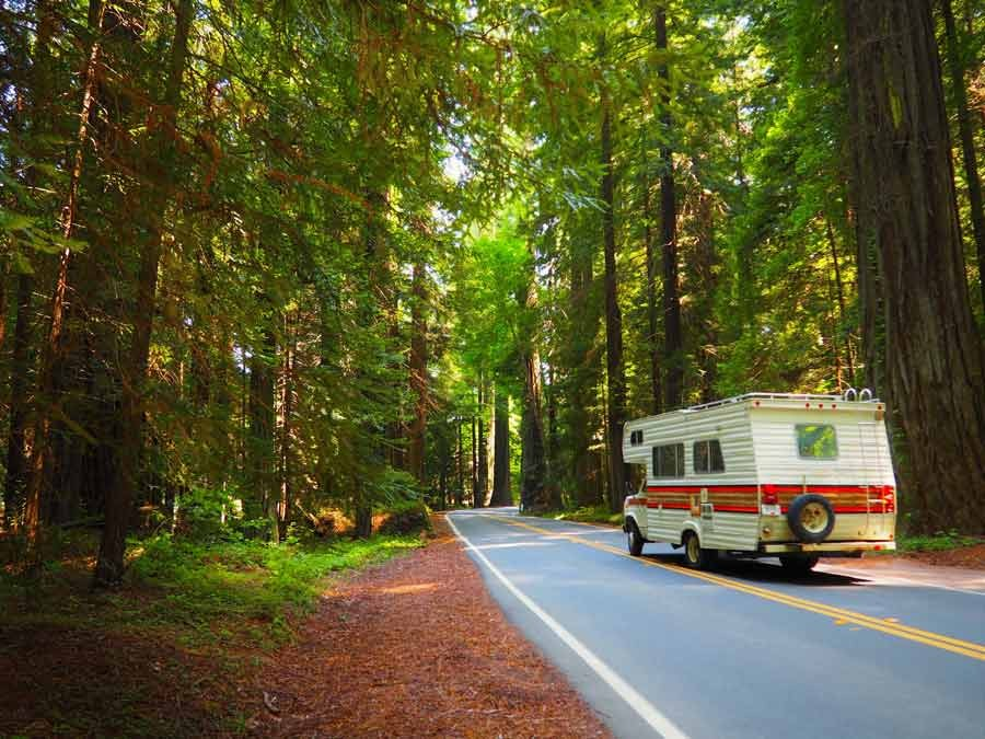 Road trip through Sequoia National Park with RV travel insurance